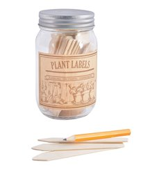 Wooden plant lables in jar