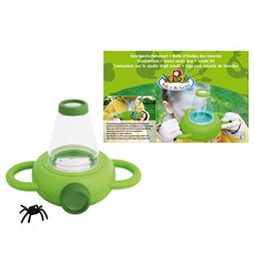 Insect study box