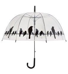 Umbrella transparent birds on wire